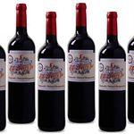 6 Flaschen Casa del Valle Cabernet für 24,94€ – goldprämierter Rotwein