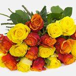 """20 Rosen """"Sunshine"""" für 16,94€"""