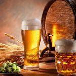 Bier selbst brauen – 150-seitiges eBook gratis oder für 1€