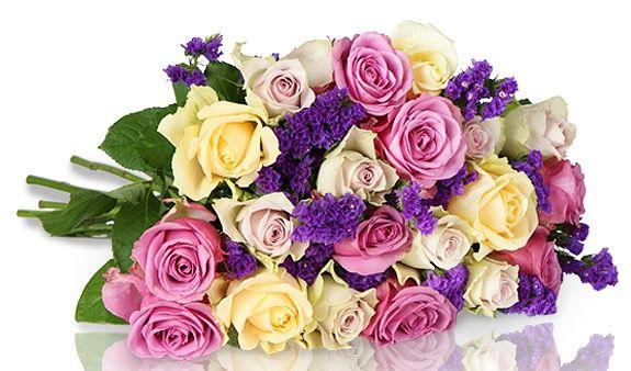 18 pastellfarbene Rosen für 18,90€ bei Miflora