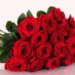 BlumeIdeal: 20 Red Naomi Rosen mit XXL-Blumenköpfen für 19,98€