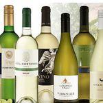 Weißwein Weinguru 9 Flaschen Probierpaket + Aromenrad für 39,99€