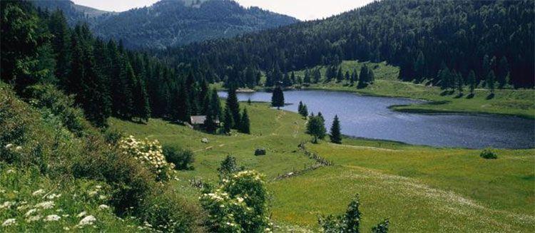 3 ÜN im Salzburger Land inkl. All Inclusive & Wellness + Kinder bis 12 kostenlos ab 74€ p.P.   HAMMER!