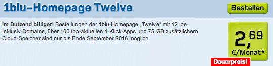 120GB Webspace + 12 .de Domains für 2,69€ mtl.