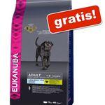 Gratis 3kg Eukanuba Adult Large Breed Huhn Hundefutter ab 14€ MBW