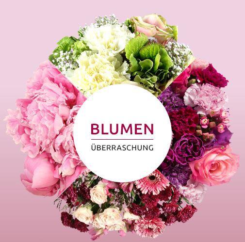 Blumen Überraschung Miflora sommerliche Blumenüberraschung für 19,90€
