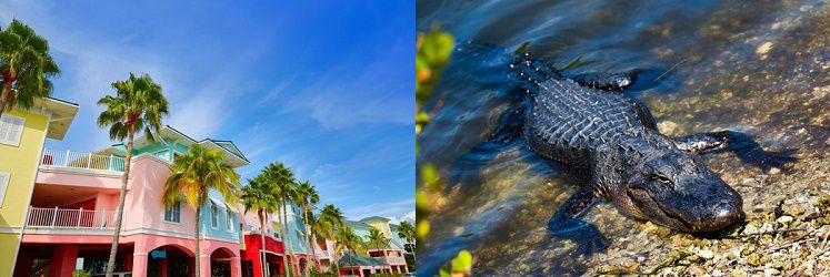 7 ÜN   Florida Rundreise inkl. Frühstück, Flug, Leihwagen