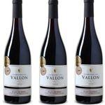 Plan de Dieu – Domaine du Vallon 2014 Rotwein Côtes du Rhône 6er Kiste für 45,87€