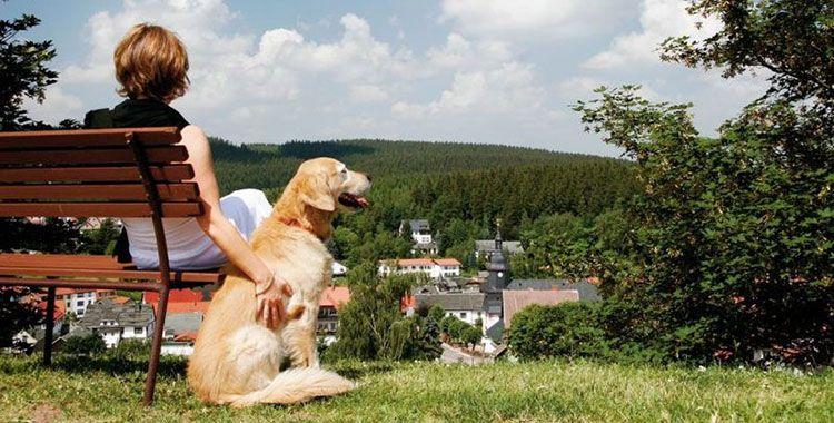 finsterbergen teaser 3 ÜN für 2 Personen (+ 1 Kind bis 11) im Thüringer Wald inkl. All Inclusive light & Sauna für 259,99€