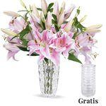 15 langstielige pinke Lilien + Vase für 22,98€