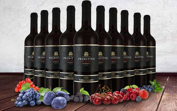 10 Flaschen Torrevento Primitivo IGT Rotwein für 39,90€