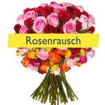 34 bunte Rosen mit 50cm Länge für 19,94€