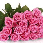 Rosen-Rallye: 25 Pretty Pink Rosen für 18,90€