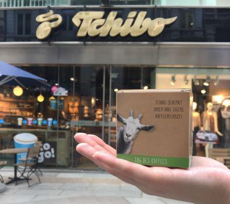 Nur heute: Gratis Kaffeepflanzset in teilnehmenden Tchibo Filialen