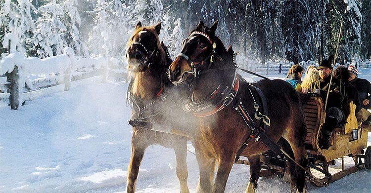 kutschafahrt teaser 2 ÜN in Österreich im Winter inkl. HP, Wellness & Pferdeschlittenfahrt (3 Kinder bis 4 kostenlos) ab 119€ p.P.