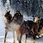 2 ÜN in Österreich im Winter inkl. HP, Wellness & Pferdeschlittenfahrt (3 Kinder bis 4 kostenlos) ab 119€ p.P.