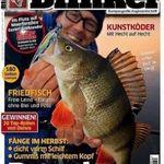 Blinker Jahresabo mit 12 Ausgaben für effkeitv 8,40€