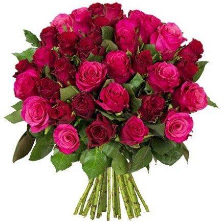 45 LovelyRoses rosa rote Rosen für 24,98€