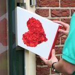 Strauß mit 11 Rosen im Lieferkarton + Grußkarte für 8,95€ inkl. Versand – Lieferung pünktlich!