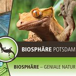 1 ÜN in Potsdam inkl. Besuch Biosphäre Potsdam, Frühstück & Fitness ab 45€ p.P.