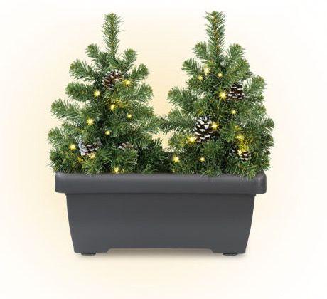 CHRISTmaxx LED Tannenbäume im Blumenkasten für 24,99€ (statt 40€)