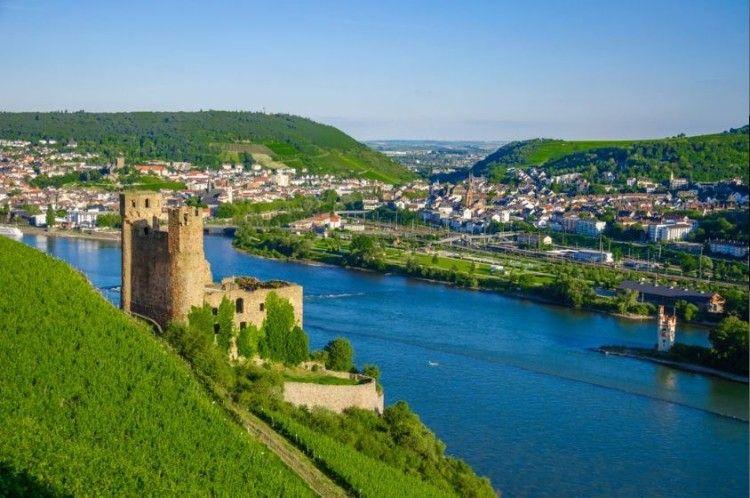13 e1483791952560 2   5 Nächte im 3* Hotel am Rhein inkl. Halbpension, 1 Flasche Riesling und WLAN ab 99€