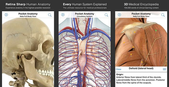 Pocket Anatomy App (iOS) gratis (statt 15€)   3D Material ideal für Studenten oder Schüler