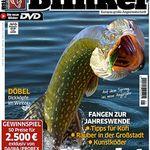 Blinker Jahresabo mit 12 Ausgaben für effkeitv 7,40€