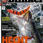 Blinker Jahresabo mit 12 Ausgaben für 9,90€