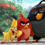 Sony Pictures Home Entertainment Aktion: Für 100€ DVDs o. Blu-rays kaufen und einen 50€ Media Markt Gutschein bekommen