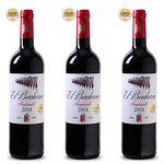 6 Flaschen El Bochorno Rioja Rotwein für 28,89€ – mit Gold prämiert!