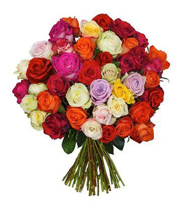 33 Rosen in Crazy Colors für 19,94€ inkl. VSK