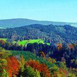 3 ÜN im Schwarzwald inkl. HP & Wellness ab 99€ p.P.
