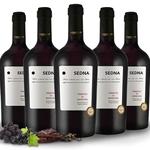 5 Flaschen Rotwein – Primitivo di Manduria SEDNA für 44,90€ (statt 69€)