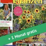 Vorbei! 3 Ausgaben Lisa Blumen & Pflanzen mit über 98€ Gewinn