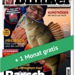 TOP! 4 Ausgaben vom Blinker gratis dank Bargeld-Prämie