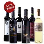 6 Flaschen prämierter Wein aus Spanien + 4 Weingläser für 45€