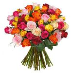 37 bunte Rosen mit 50cm Länge für 23,94€