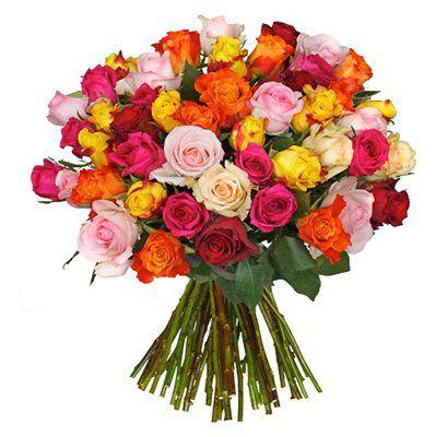 50 bunte Rosen mit 50cm Länge für 27,98€