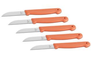 Extrascharfes Küchenmesser 5 teiliges Set + 2 weitere Gratisartikel ab 5,97€