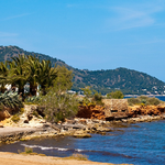 7 oder 14 ÜN auf Mallorca inkl. Frühstück oder Halbpension, Sauna, Jacuzzi und Flügen ab 359€ p. P.