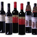 6 Flaschen Rotwein im spanischen Probierpaket für 39,95€