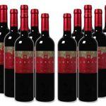 12 Flaschen Bodegas del Rosario Lorca Bullas DO Rotwein für 59,99€