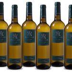 6 Flaschen Navarra DO Fortius Blanco Weißwein für 19,99€