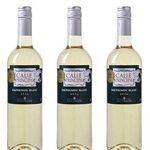 12 Flaschen Calle Principal Sauvignon Blanc Weißwein 2018 für 33,99€ inkl. Lieferung