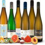 6 Flaschen Premium Riesling Wein im Probierpaket für 44€