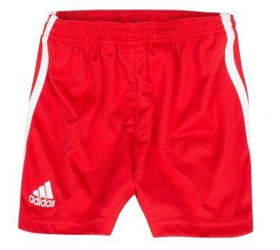 adidas Liverpool Kinder Shorts für 3,99€ (statt 15€)