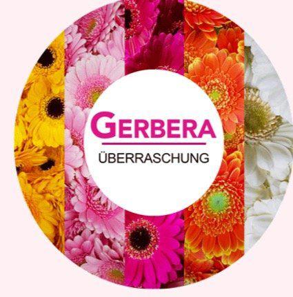 30 Gerbera Blumen in Überraschungsfarbe für 18,94€