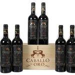 6 Flaschen Caballo de Oro Rotwein in hübscher Holzkiste für 41,94€ – mit Gold prämiert!