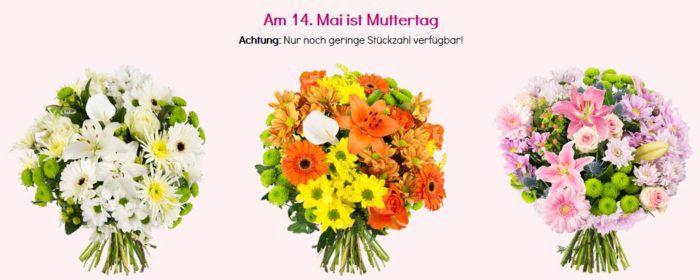 Blumen zum Muttertag ab 20,94€   z.B. 23 rote Rosen mit 50cm Länge